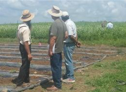 Farmers and researchers exchange ideas at a reverse field day on soil balancing.
